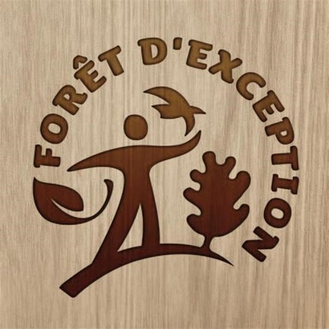 Foret d'exception